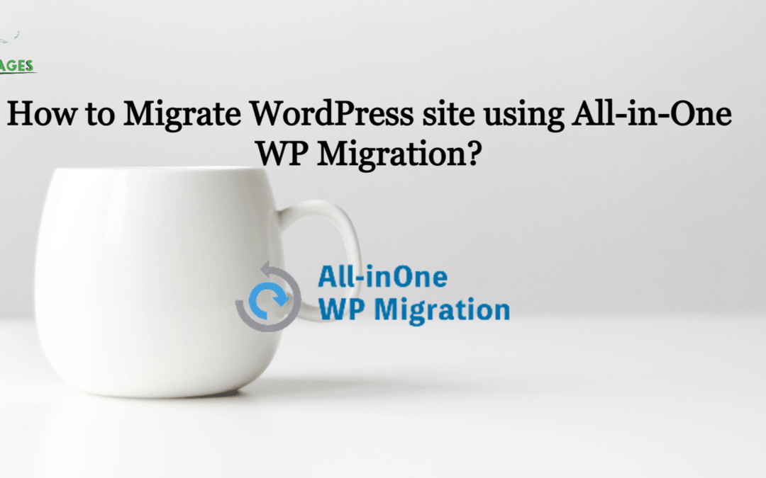 How to Migrate WordPress site using All-in-One WP Migration?