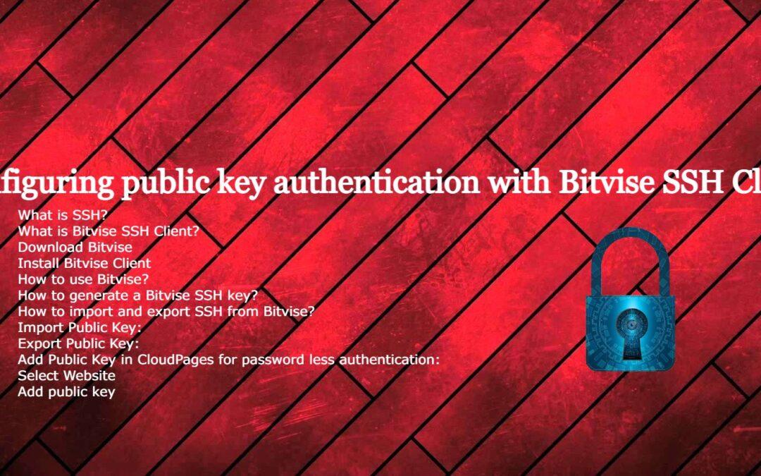 Configuring public key authentication with Bitvise SSH Client